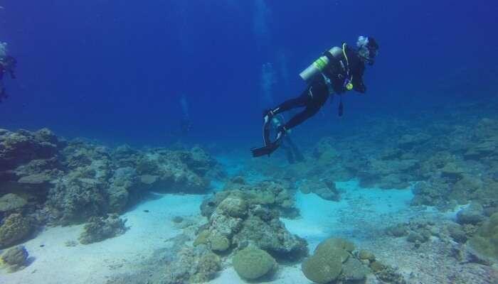 diving training program