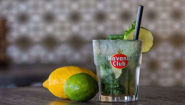 enjoy the drink of real mojito
