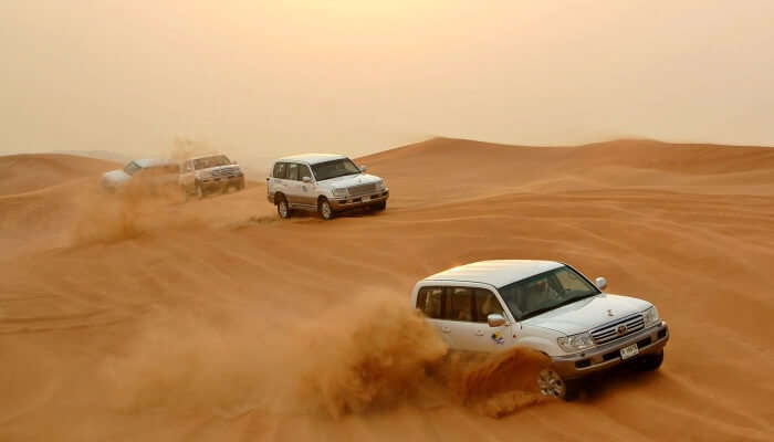 Dune Bashing is the best place for safari