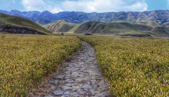 Dzokue Valley