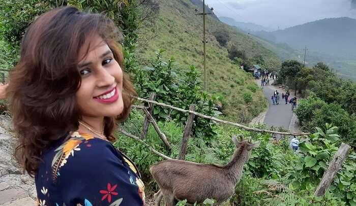 Eravikulam National Park - Tahr Goat