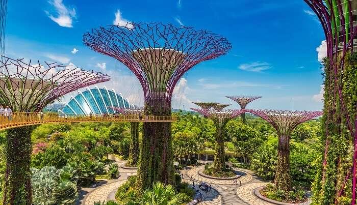 surreal man-made gardens