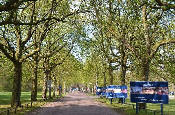 parks in netherlands
