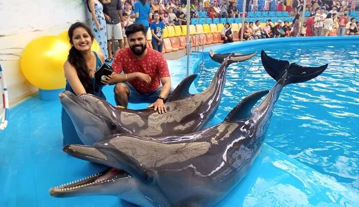 went to see the Dolphin show