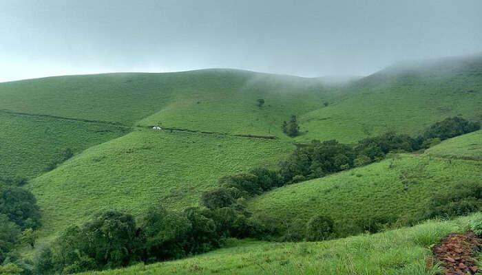 Madikeri view