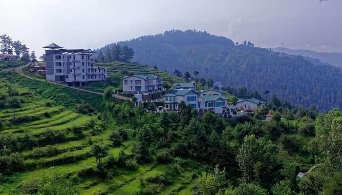 green landscape view, uttarakhand