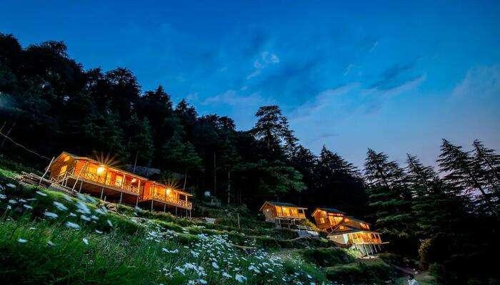Mid Conifer Cottage
