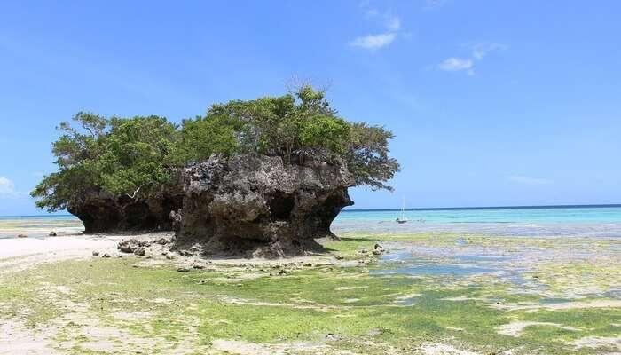 Misali Island Beach