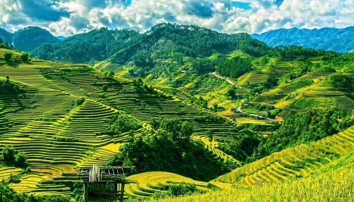 Mu Cang Chai during September is a must