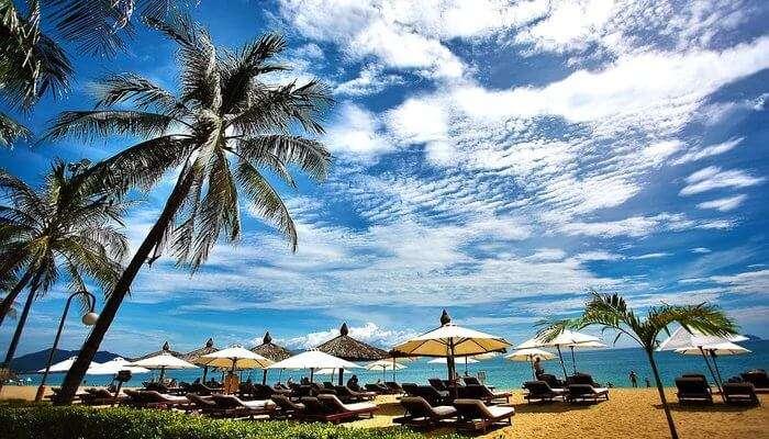 Oyster Opera Island Resort