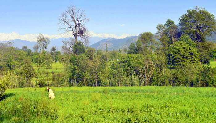 Poonch Valley