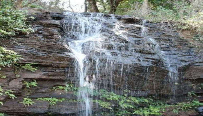 Shanti Falls