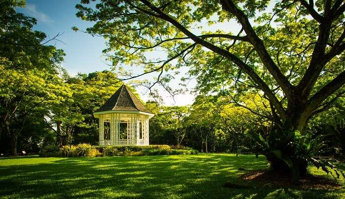 enjoy the serenity of the Botanic Gardens
