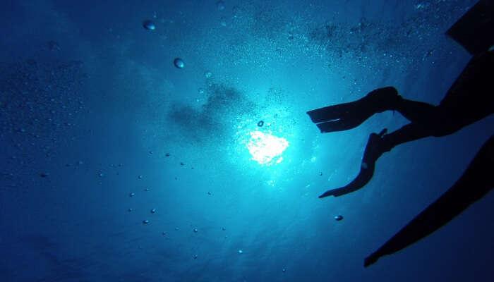 Do Snorkeling