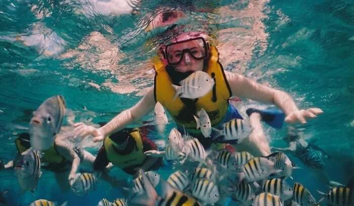snorkelling in maldives sea