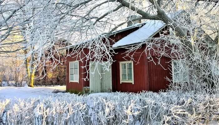 Snow View Cottage