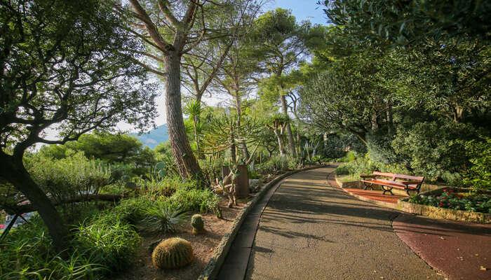 St Martin Gardens In Monaco