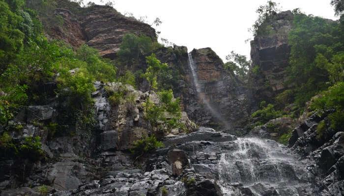 beautiful ambiance and greenery surrounding the falls