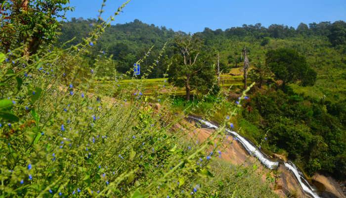 Tatiguda Waterfalls