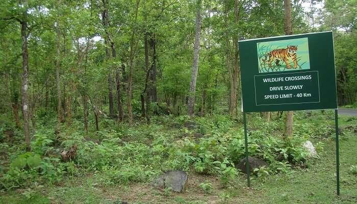 Tikarpada Tiger Reserve