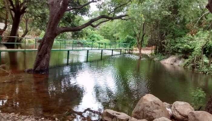 best Ubbalamadugu Falls