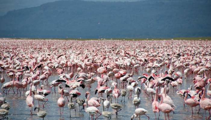 best places to visit in kenya