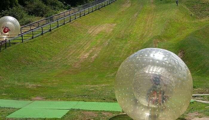 enjoy the zorbing ball