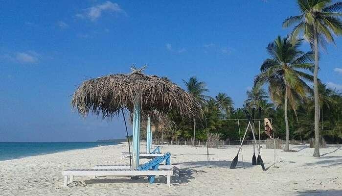 coral paradise resort lakshwadeep