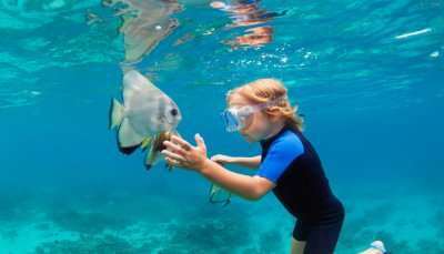 Best Snorkeling In Seychelles