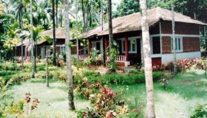 Shri Sai River View Jungle Resort