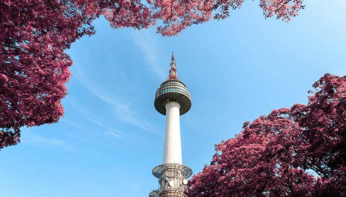 Enjoy The Skyline From Seoul Tower