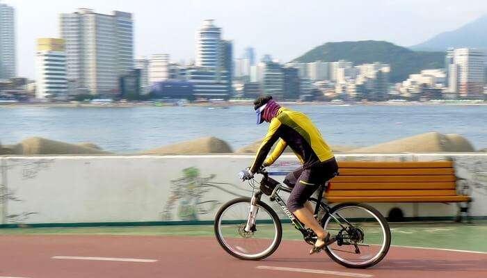 Go Biking