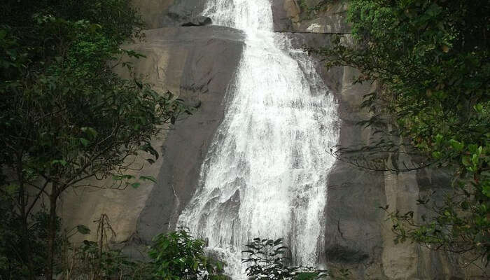 Thusharagiri Waterfall