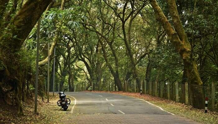 Weekend Getaways From Coimbatore