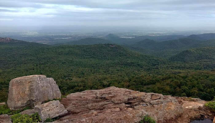 Biligiriranga Hills View Point