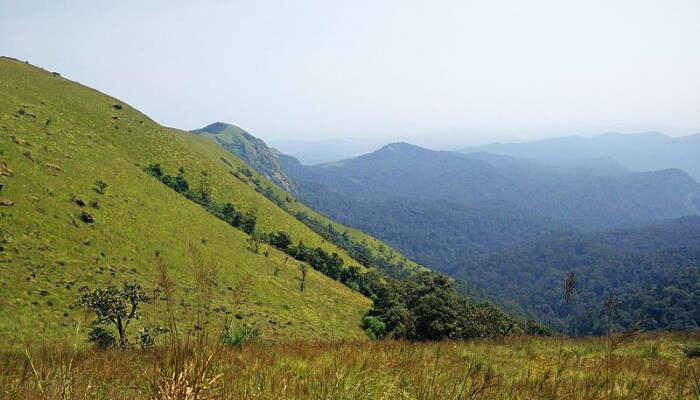 Hill Serene View