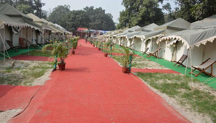 Stays Near Sonepur Mela