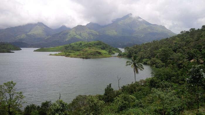 A Lush Landscape in Wayanad