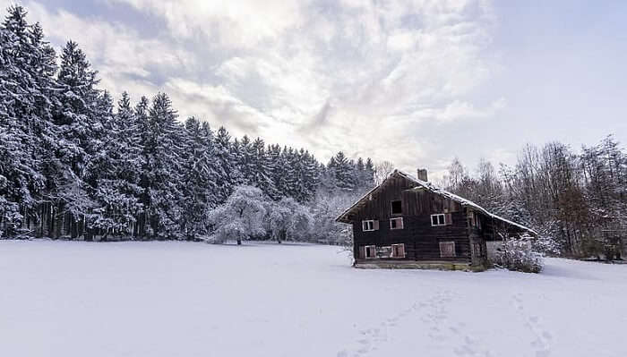 snow covered place